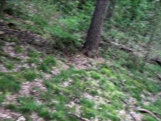 German ash-blonde hefty innate bosoms outdoor homemade romp in woods